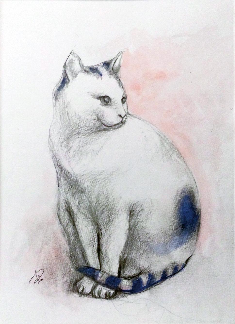 15ハートの猫