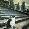 5ミケランジェロ広場の猫